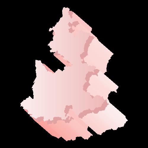 Elección Puebla 2018