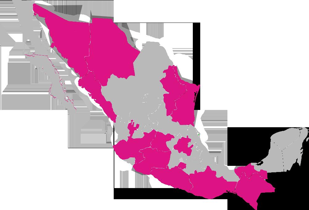 MAPA Dipfed Candidaturas independientes