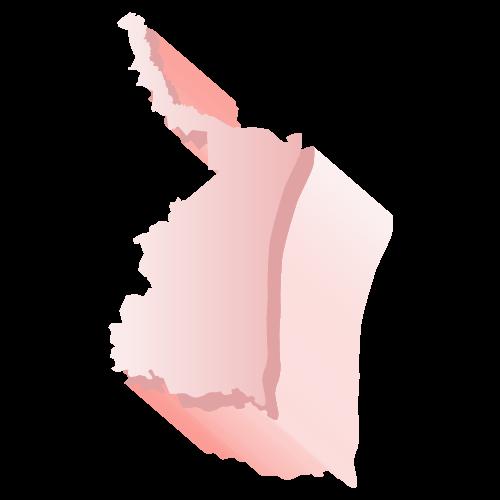 Elecciones 2019 Tamaulipas
