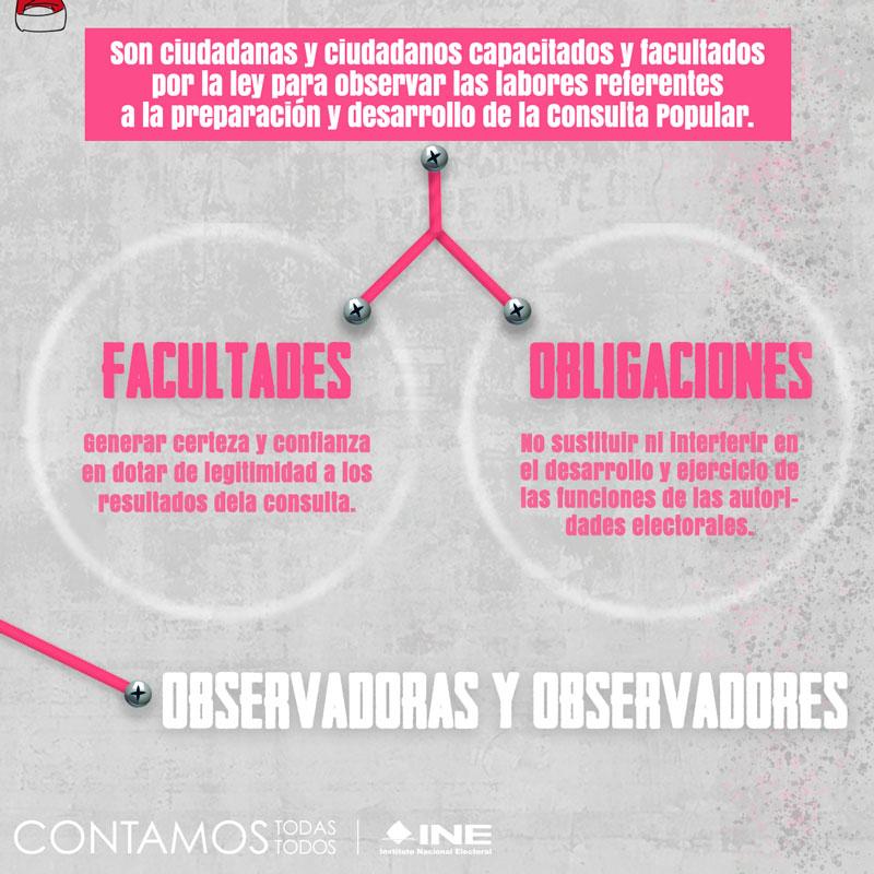 Observadores y observadoras de la consulta popular